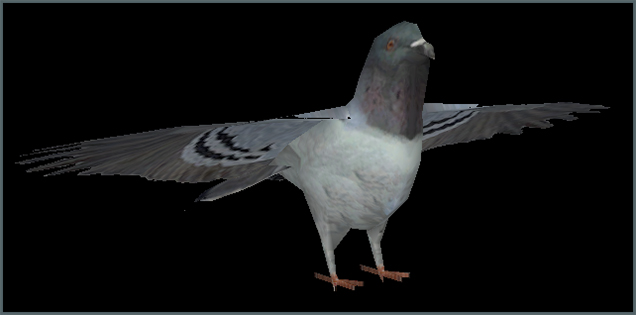 Pidgeon Model