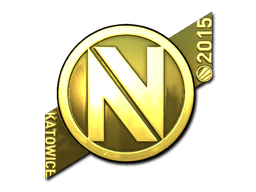 teamenvyus_gold_large