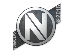 teamenvyus_large